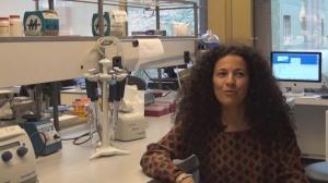 Madiha Derouazi Amal Therapeutics