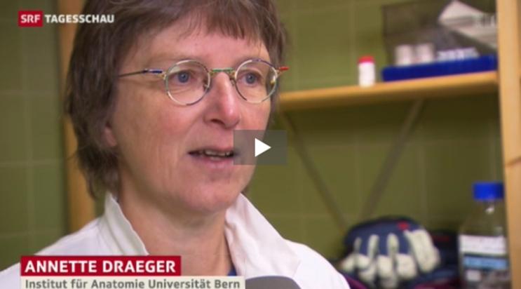 Annette Draeger
